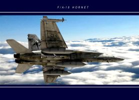 FA 18 Hornet by brinjal