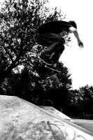 Wouter G. - Tre flip by Obscurity-Doll