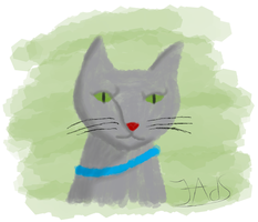 Gato by Luned13