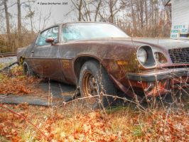 Z28 Resting Place by jim88bro