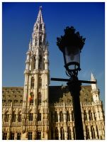 Brussels Town Hall - 2 by osmo