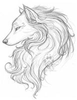 White Wolf Sketch by Idess