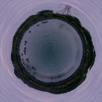 Duck Pond Stereograph by gpsc