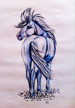 #31 Drawing a horse a day 2015 by Nienke15