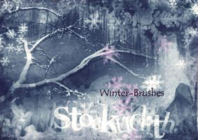 054 - Winter Wonderland by Stockudith