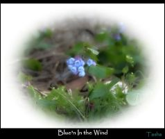 Blue'n In the Wind by MakersMischief