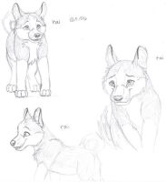 kai sketches by melted-gummy-bears