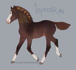 8143 Imperator - Foaldesign by NorthEast-Stables