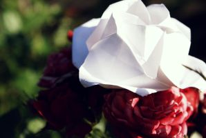 Paper Rose by stackomac