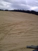 Just tracks in the sand by KMKramer44