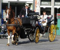 Horse carriage stock by Manonvr
