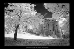 Fort Siklos in IR - III by DimensionSeven