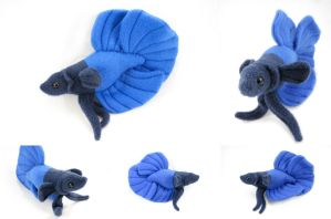 Royal Blue, Custom - Half Moon Tail by BeeZee-Art
