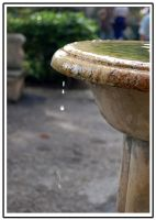 Water drops-1 by PauloOliveira