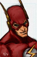 The Flash Sketch and Video by ErikVonLehmann