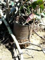 Tin Can Weed Pot by MorganCG