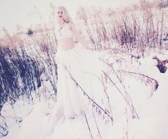 The Snow Queen3 by possion