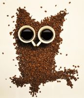 Coffee owl by paniparanoja