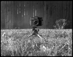 2013-218 Holga Pinhole by Welta Weltur by pearwood