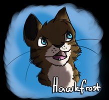 :WC - Potrait: Hawkfrost by IronMeow