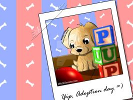 Yip, Adoption Day by atnezau