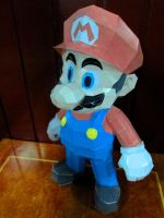 Papercraft - Super Mario 02 by ckry
