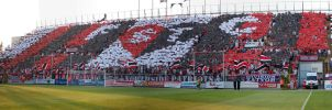 FCST Spartak Trnava by FCST23
