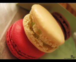 macaroon laduree by ManoAziz