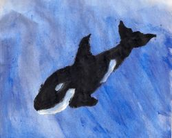 another entry in the :draw a bunch of orcas: serie by dazkaj9