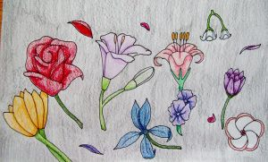 Flowers by Punisher2006