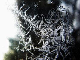Frost on the window by MTJforever