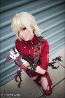 AFA 2012 - Hellsing - 02 by shiroang