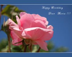 Happy Birthday Dear Maria by ForgivenDreamSoul