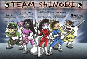 Team Shinobi for CaseyDecker by shinragod