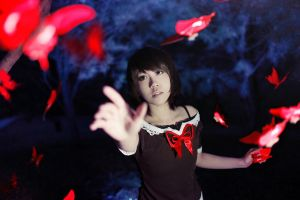 Fatal Frame 2 - Crimson Butterfly by Sakina666