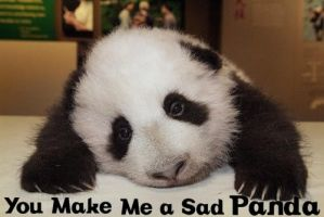 Sad Panda by DGuerrilla