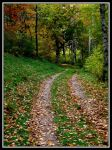 Winding Old Road by midgard