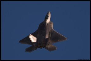 Nellis Raptor 2010 XI by AirshowDave