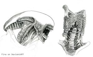 Alien sketches by RideFire