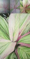 Cordylines by 2forUIforme