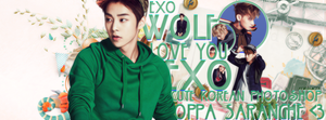 Exo Facebook Cover by NiklausAysegulSS