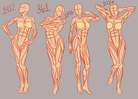 References, they do a body good: Female part 1 by Spork-