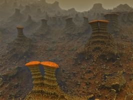 Misty Mountain Mushrooms by AureliusCat