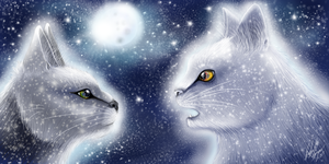 A Prophecy from StarClan by SpiritTigar