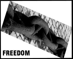 Freedom 1 by PauloOliveira