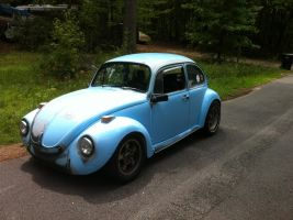 Pic of my bug 10 by NekoVWMike