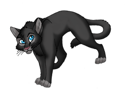 Crowfeather FanArt by WindWo1f