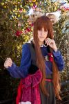 Horo II - Spice and Wolf by Nawin92