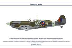 Spitfire Mk V GB 121 Sqn by WS-Clave