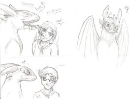 Toothless and Mr Phoenix by TiaPunky